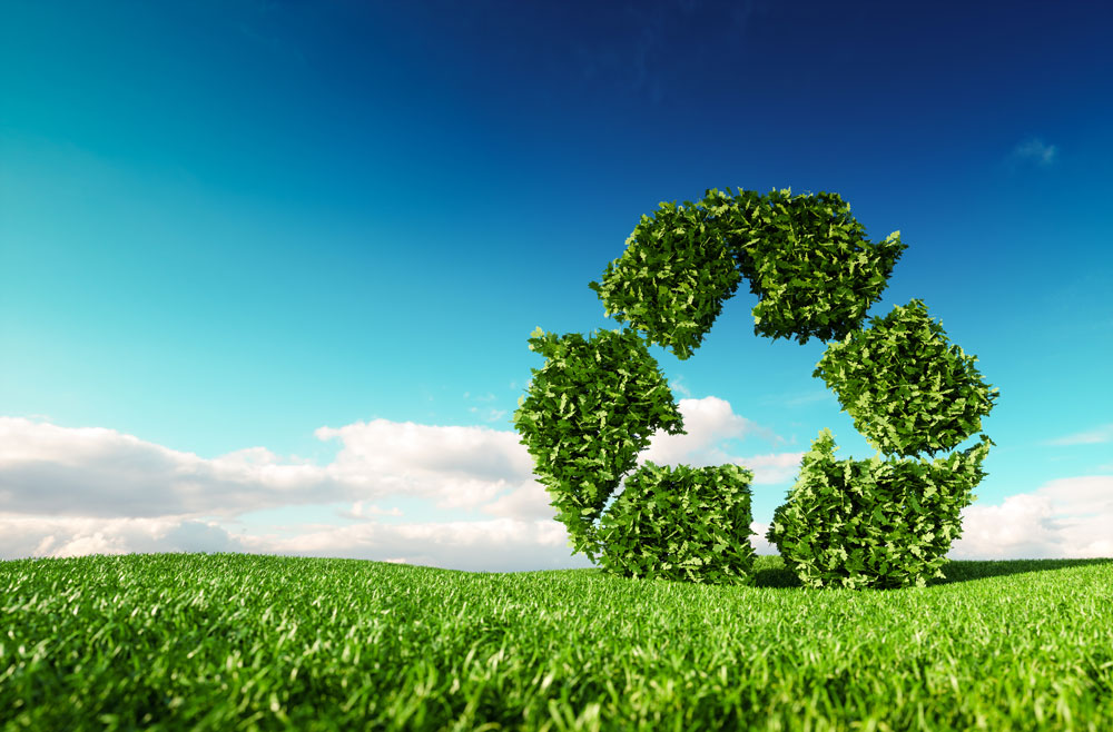 Sustainability Remains Top Issue in Some States